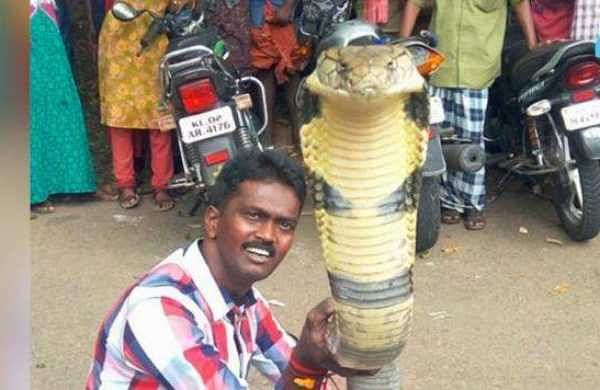 Meet the cobra man of India, Vava Suresh- The New Indian Express