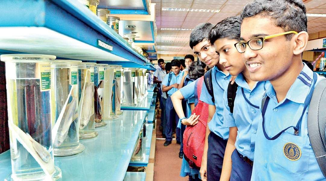 School students catching a glimpse of the various exhibits placed at the CMFRI museum in Kochi on Friday | Express
