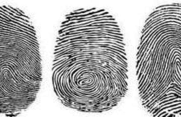 new fingerprint test to detect cocaine use within seconds the new indian express