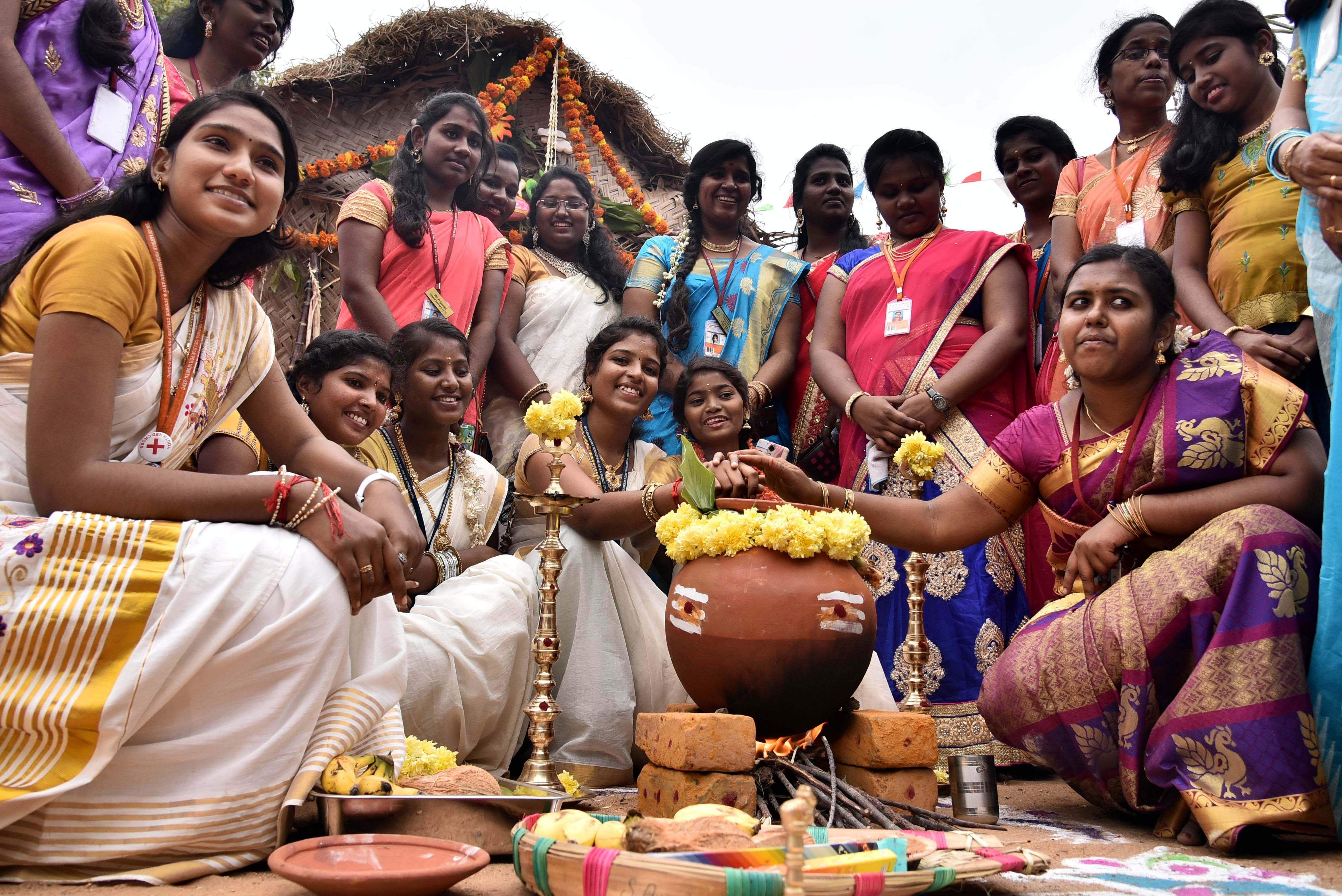 Pongal Celebrations Kicks Off Across Tamil Nadu