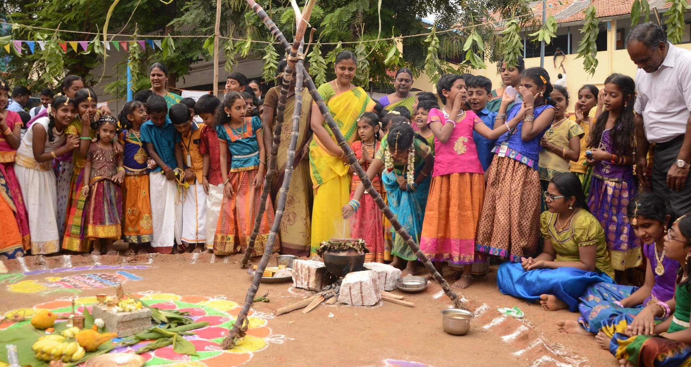 small essay pongal festival English small essay about pongal festival  english essay about kaanum  pongal festival  english a small article about pongal festival.