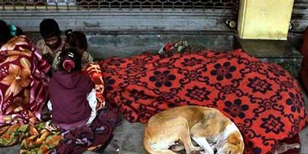 Stray dog reaches Bengaluru by train after Sabarimala padyatra- The