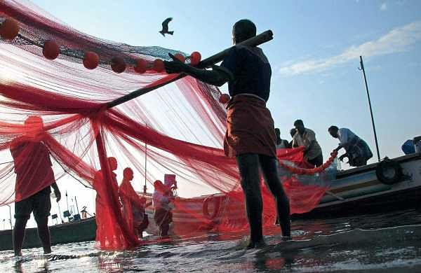 A group of fishermen arranging their nets for the job at Chellanam harbour in Kochi | K Shijith