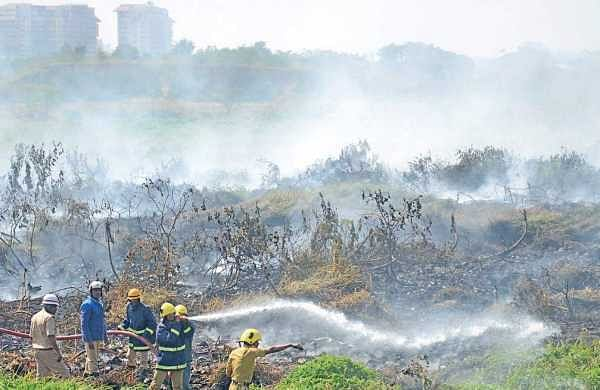 Fire personnel douse the fire at Bellandur Lake in Bengaluru on Saturday | Pushkar V