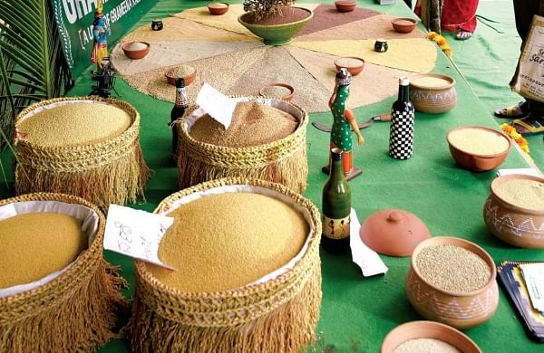 Millets image used for representation (File Photo)