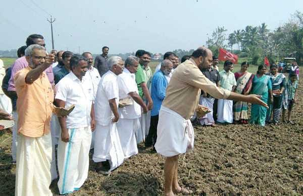 CPM district secretary and former MP P Rajeev sowing vegetable seeds at Karumaloor as part of the 'Jaiva Jeevitham' programme on Monday | Express