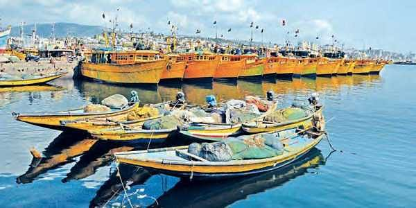 80% fishing boats stay anchored on shore as catch dwindles
