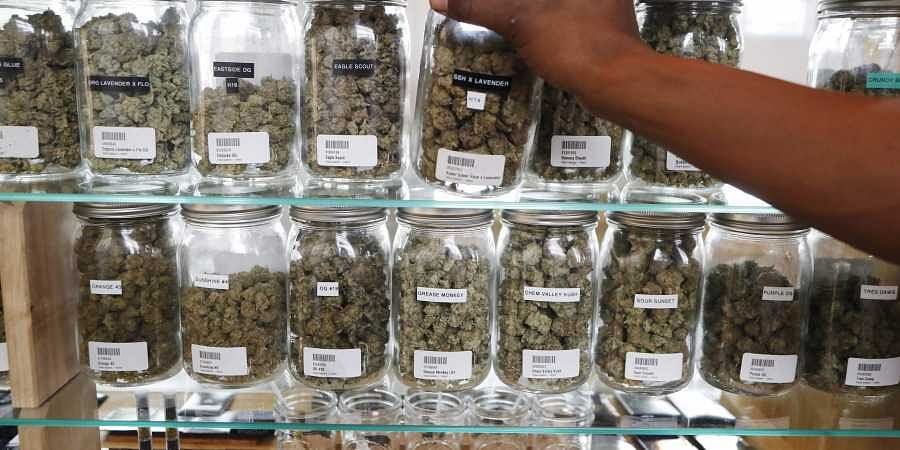 In this Tuesday, Oct. 2, 2018, photo, a clerk reaches for a container of marijuana buds for a customer at Utopia Gardens, a medical marijuana dispensary, in Detroit. (Photo | AP)