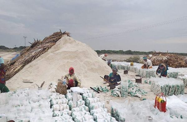 A group of workers packing salt at a salt pan in Kodiyakarai, in an attempt to despatch a consignment ahead of the landfall of cyclone Gaja. | Express Photo Services