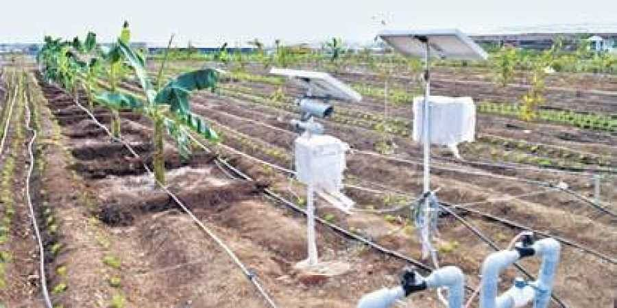 Machine To Make Farming Easier For Visually Impaired The New Indian Express