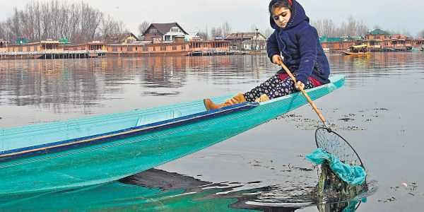 Jammu and Kashmir: Five-year-old Jannat on Mission Dal Lake- The ...