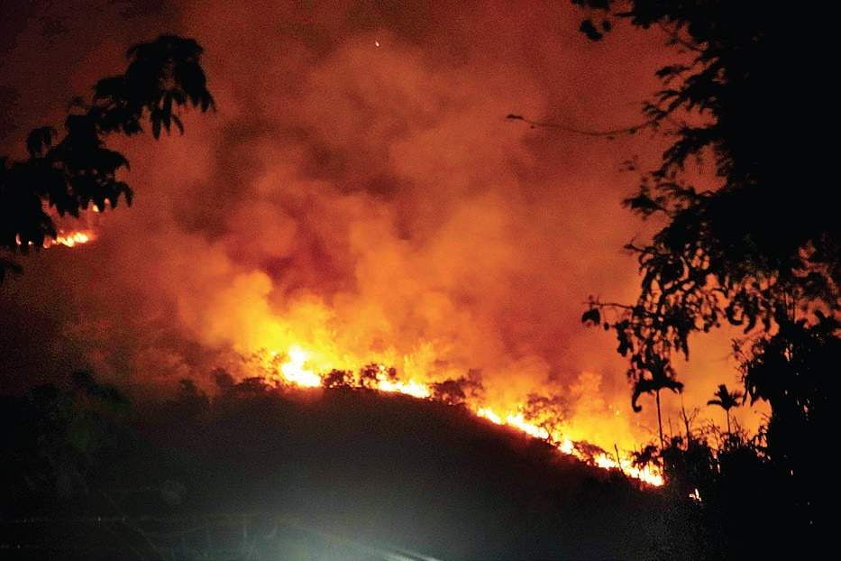 Theni forest fire: 8 dead, IAF join rescue operation