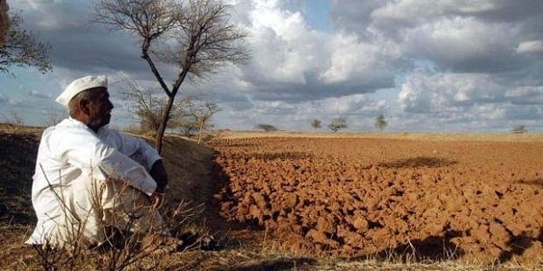 Why are India's farmers committing suicide?- The New Indian Express