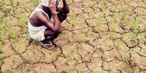23 more Andhra Pradesh mandals declared drought-hit- The New