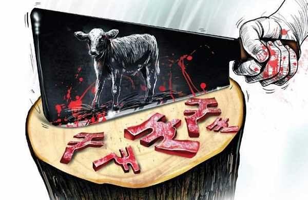 Illegal slaughterhouses flourish in the city