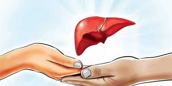 WhatsApp forwards about organ donations mostly hoax