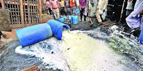 Harpreet Bajwa, milk, adulteration, maayam