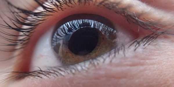 human eye, iris