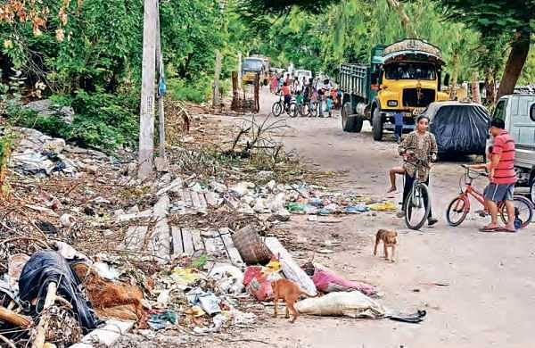 Garbage littered all over the road in Balaji Nagar in Vijayawada;