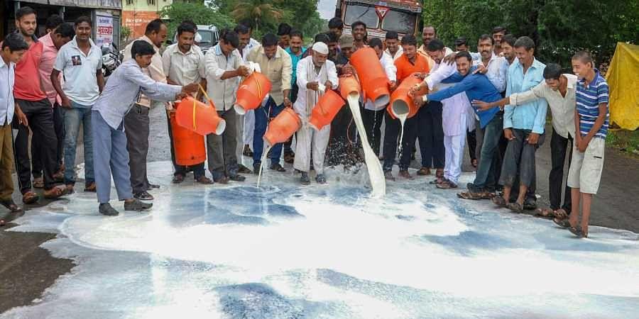 Milk farmers