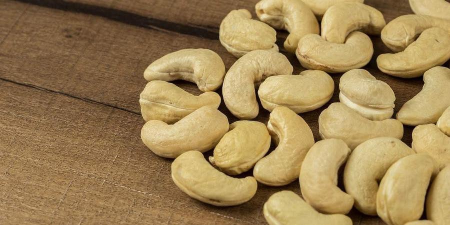 Cashew industry bears brunt of falling economy