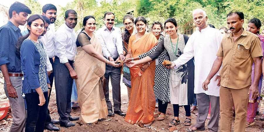 Five years, one crore Palmyra trees- The New Indian Express