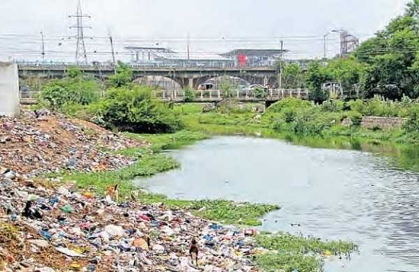 Traces of pesticides in milk collected from the Musi riverbank | S SENBAGAPANDIYAN