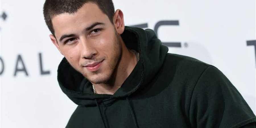 Nick Jonas Joins Kelly Clarkson Pitbull In Uglydolls The New