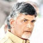 Andhra Pradesh Chief Minister Naidu | PTI