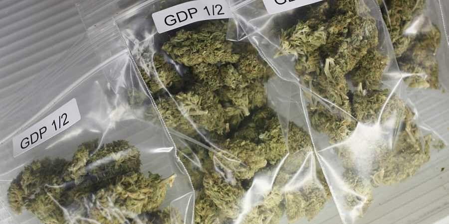 marijuana, weed, cannabis, ganja