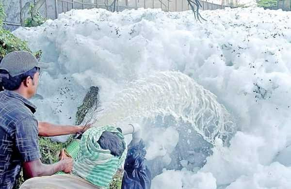 Worker clearing froth that was formed after Tuesday's heavy downpour at Bellandur lake in Bengaluru | PANDARINATH B