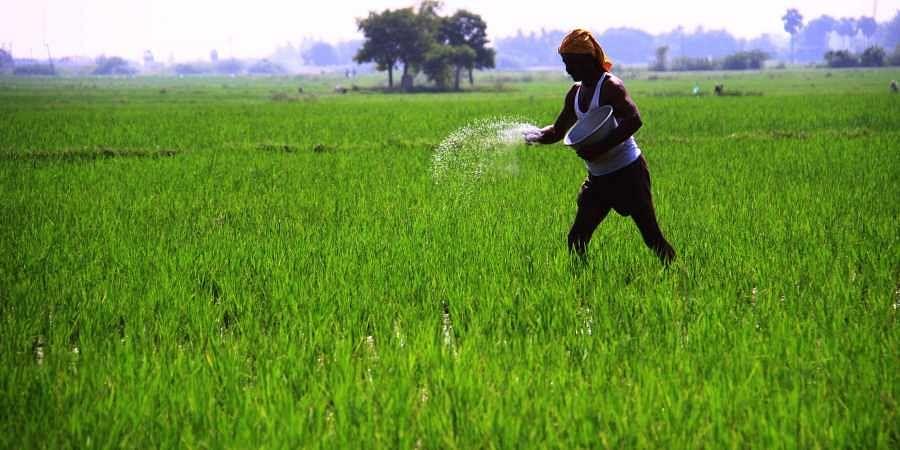 farmers, loan waiver