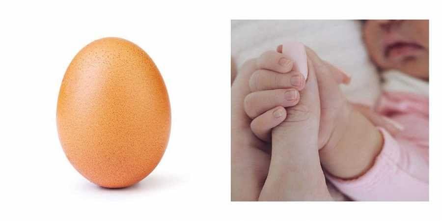 Egg, Kylie jenner