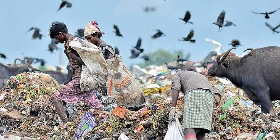 Local bodies spend lakhs ferrying plastic waste to cement firms in