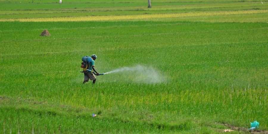 farmers, farm subsidy