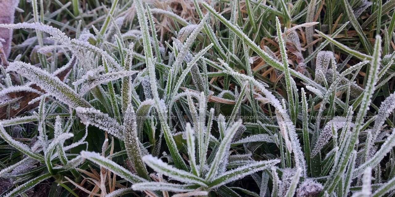 Munnar Freezing 2019   Albin   EPS