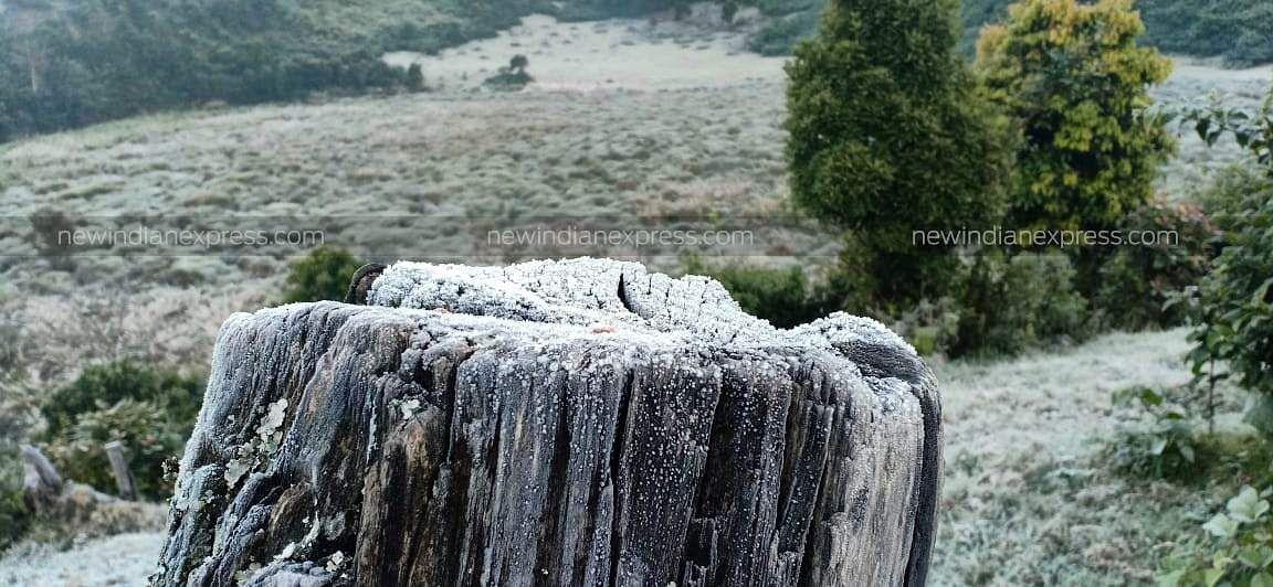Munnar Freezing 2019 | Albin | EPS