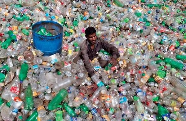 Plastic-eating bacteria discovered in Greater Noida wetlands