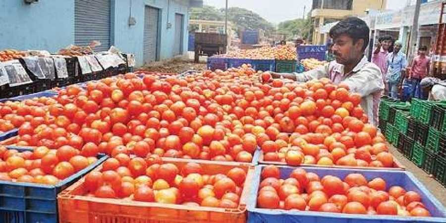 Tomato prices have shot up to Rs 80 per kg in retail markets in Delhi and the NCR