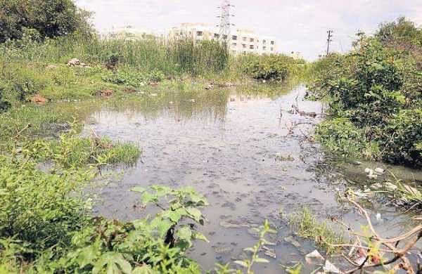 Stagnant sewage on a piece of private land at Thalamabur village in Navalur is threatening residents    DEBADATTA MALLICK