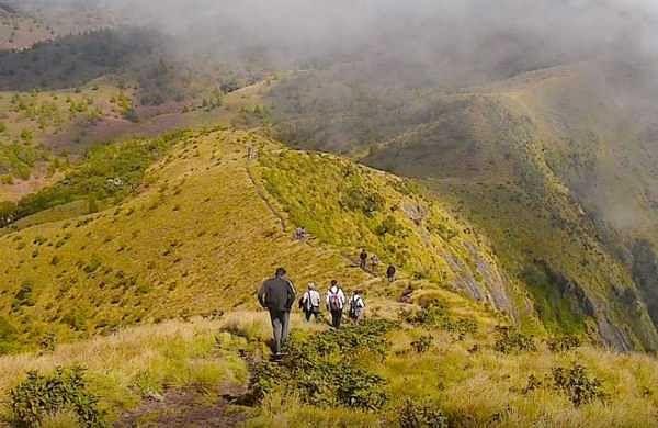 MesmerisingMeesapulimala: Second highest peak in south India