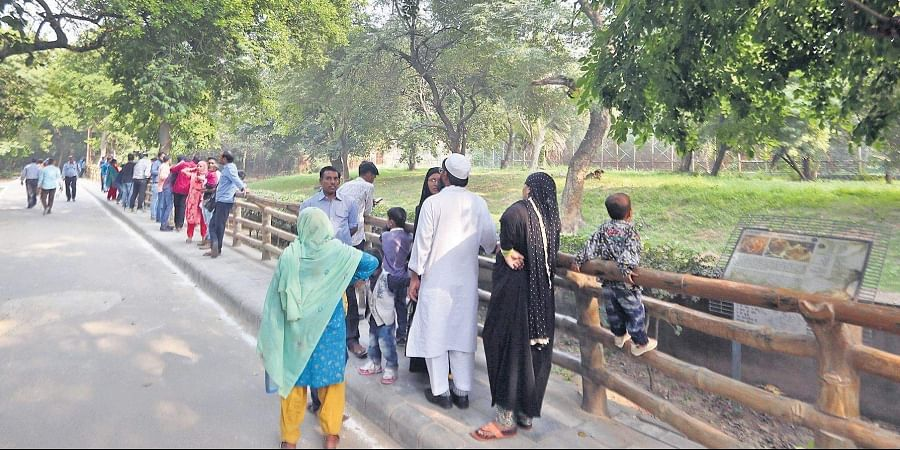 Curious visitors at the lion enclosure in Delhi Zoo, where a youth had entered earlier in the day. This is not the first such case to happen in this zoo.