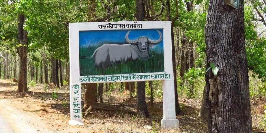 The Udanti-Sitanadi Tiger Reserve