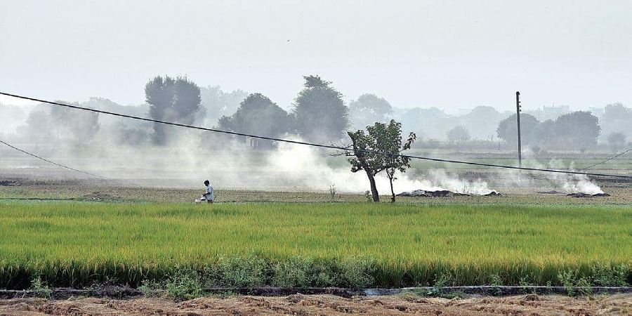 Farmers set fire to stubble in a field in north Delhi's Narela area on Friday evening.