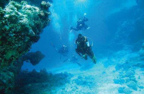 Reefs to lure tourists totake the plunge