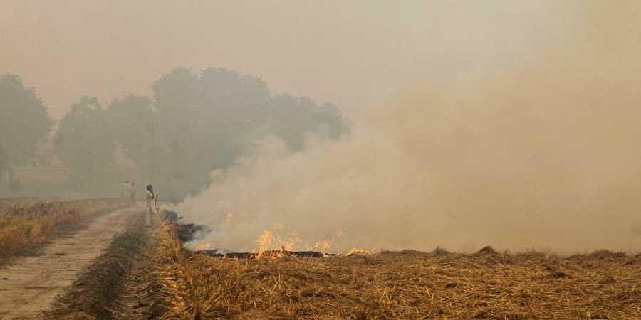 stubble burning, air pollution