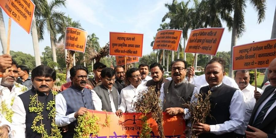 Shiv Sena MPs protest outside the Parliament House on farmers' distress in New Delhi on Monday. | (Photo | Shekhar Yadav/EPS)