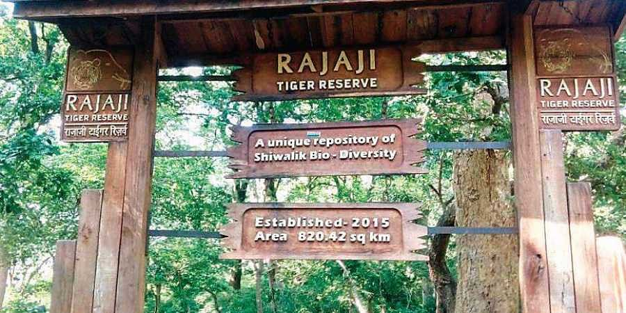 In 2015, Uttarakhand High Court had ordered removal of 80 families residing within the boundaries of the Rajaji Tiger Reserve