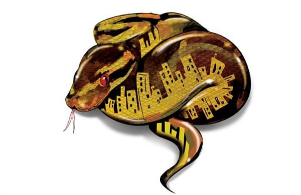 Snakebite a major health concern in north Kerala