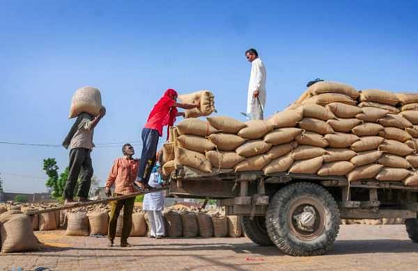 No discrimination between ration, non-ration cardholders in giving foodgrain: Delhi govt to HC